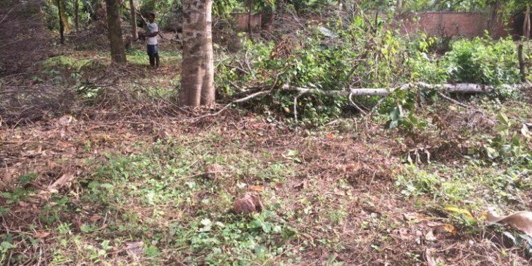 Big land for sale in Prek Eng (5)