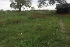 Investment land for sale in Prek Eng (1)