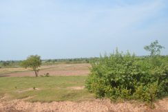 1.5 hectare Land for sale in Phnom Penh (3)