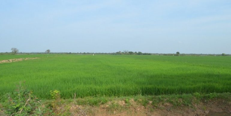 Big land for sale in Phnom Penh Ly youngphat area (4)