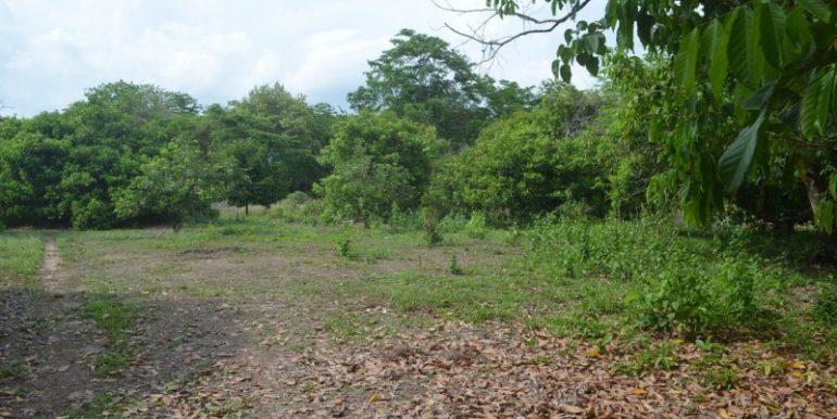 land near lake for sale in Kampot (3)