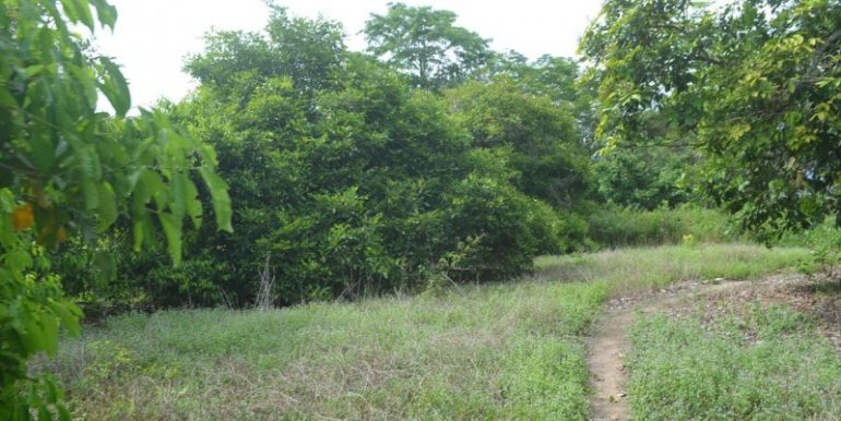 land near lake for sale in Kampot (4)