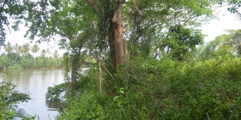 land near lake for sale in Kampot (5)