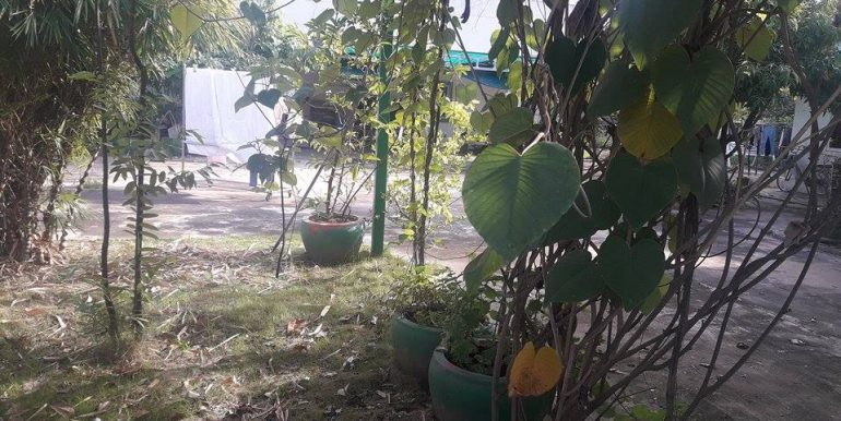 Land for rent in Phnom Penh Thmey (2)
