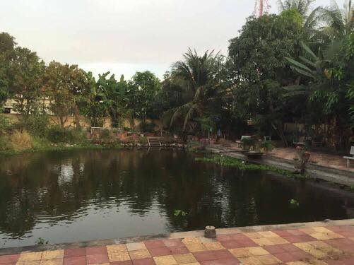 Big Land And House For Sale In Pursat (5)