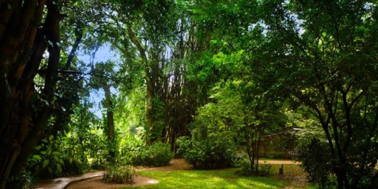 Land For Sale In Siem Reap (4)