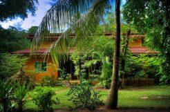 Villa For Sale In Siem Reap (19)