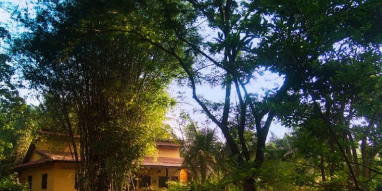 Villa For Sale In Siem Reap (21)