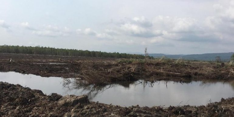 18$m2 Investment Land For Sale In Koh Kong (9)