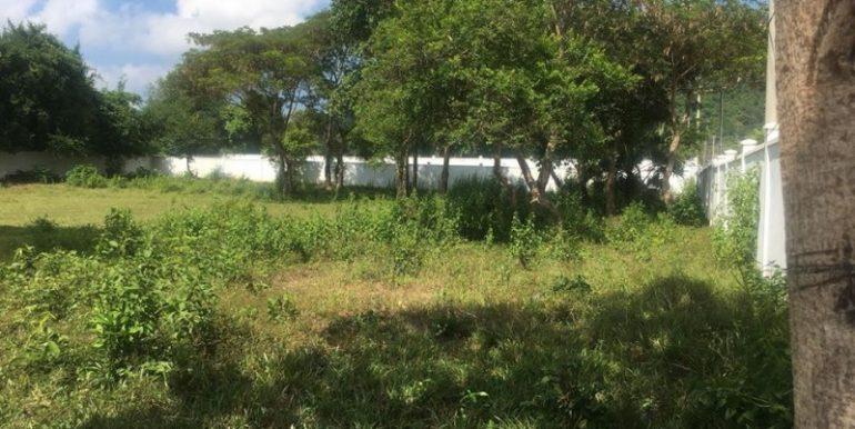 Land at keo Krosang (kep) for sell (5)