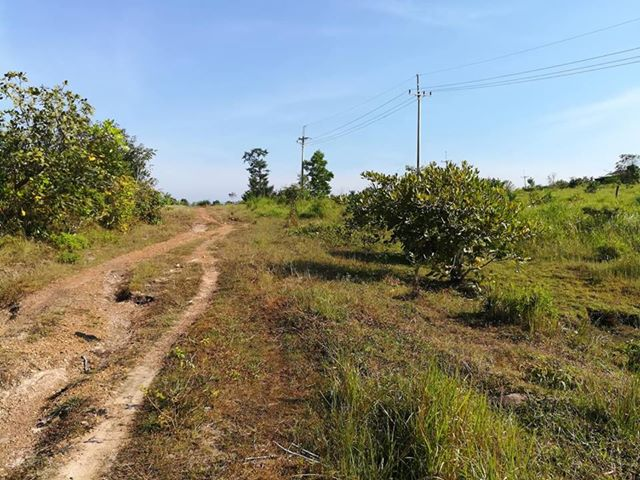 Land for sale at Koh Kong (Good Location)