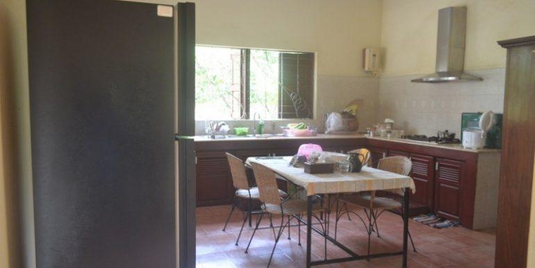 Big villa for sale (4)